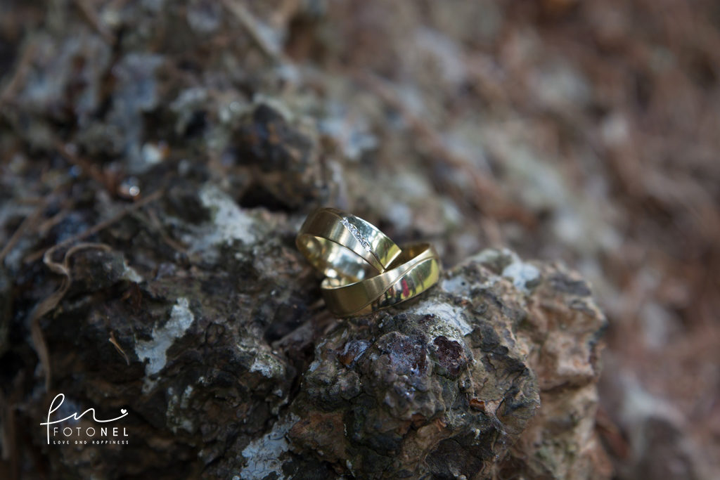 foto-ringen-wisselen-heerenveen-01